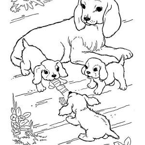 jungle animals coloring pages unique