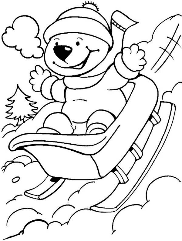 Winter, : Cute Bear Playing Winter Sleigh Coloring Page