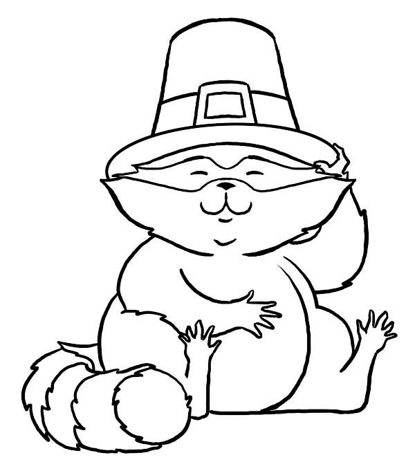 Thanksgiving Day, : Cute Racoon Wearing Pilgrim Hat on Thanksgiving Day Coloring Page