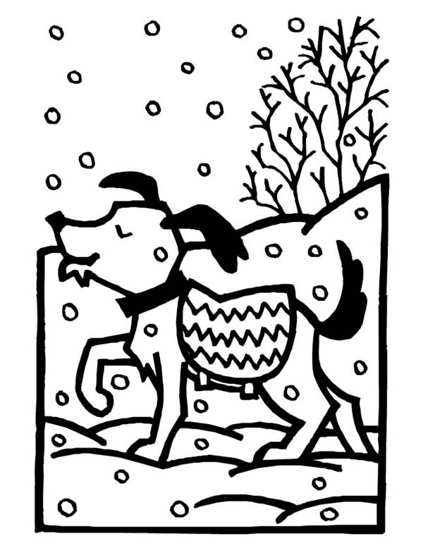 Winter, : Dog on Warm Sweater During Winter Snow Coloring Page