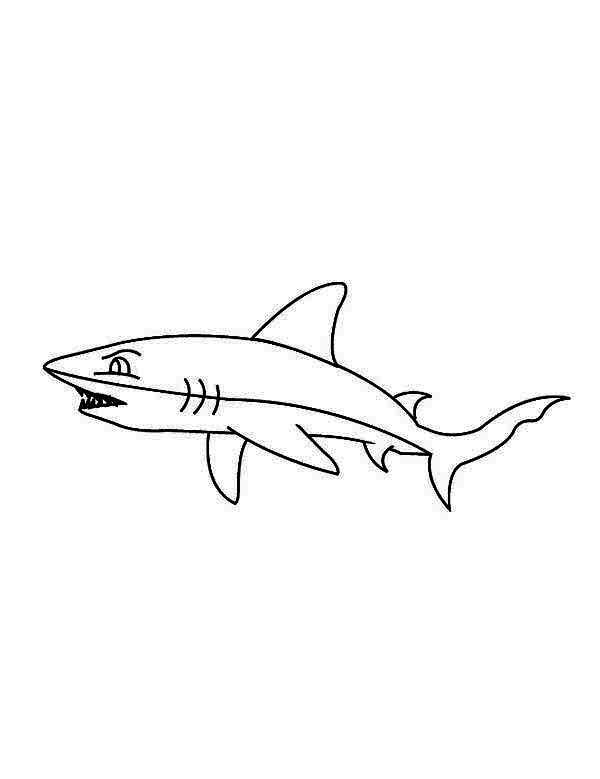 Sharks, : A Blacktip Shark Looking for the Prey Coloring Page