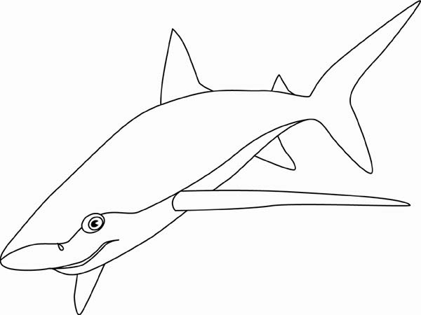 Sharks, : A Blue Shark Patroling the Sea Bed for Food Coloring Page