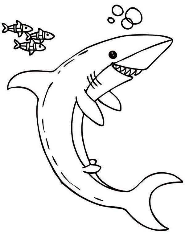 Sharks, : A Cartoon Illustration of Shark and Little Fish Coloring Page