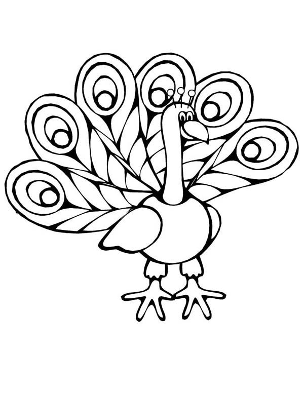 Peacock, : A Cartoon Imagery of Peacock Coloring Page