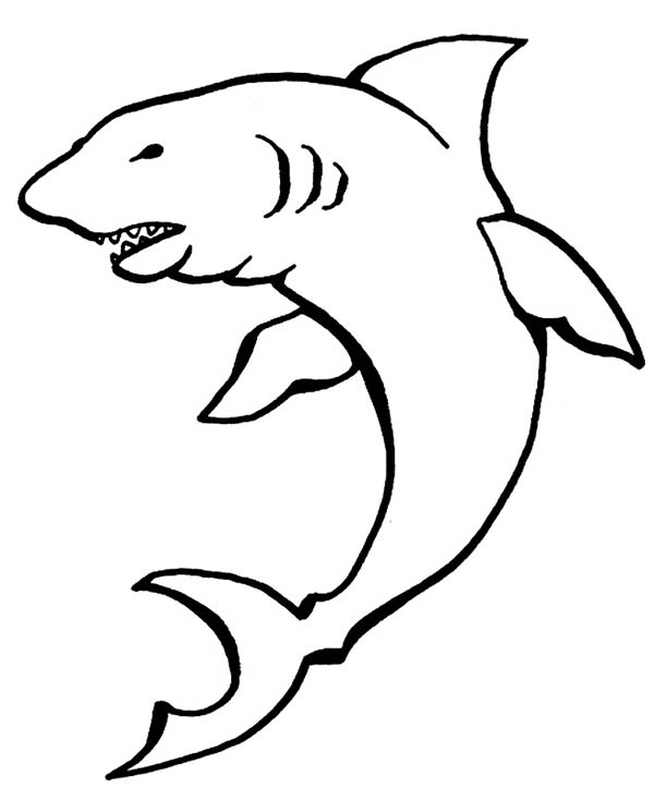 Sharks, : A Drawing of Cookiecutter Shark Coloring Page
