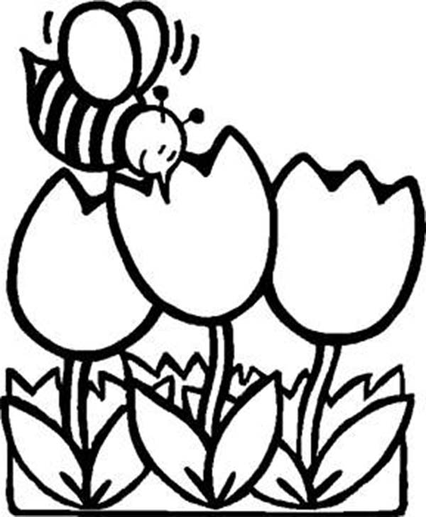 Tulips, : A Fat Bee Flying Over the Tulips Coloring Page