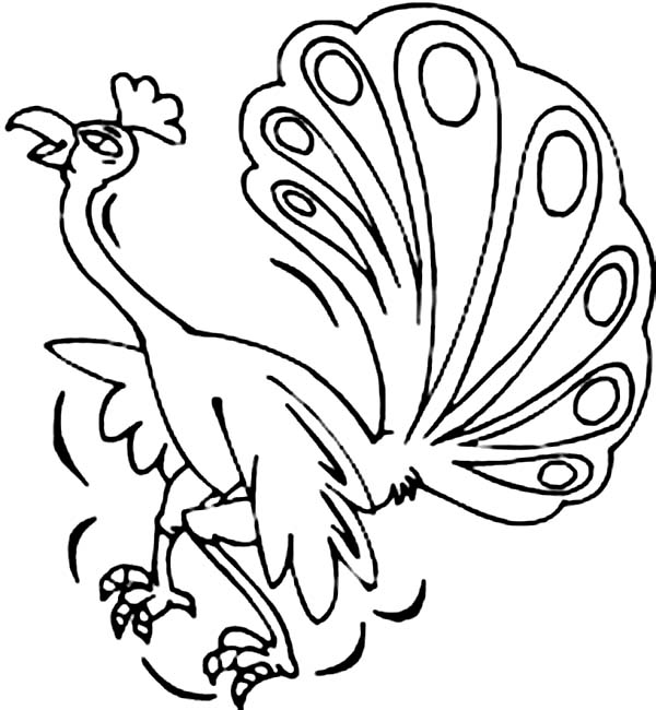 Peacock, : A Hilarious Peacock Dancing Wildly Coloring Page
