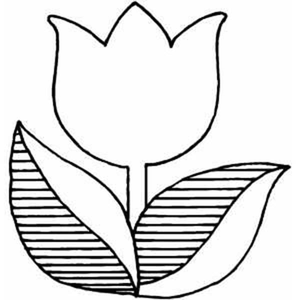 Tulips, : A Logo Version of Tulip Coloring Page