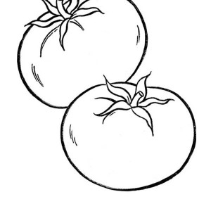 Types Of Cornucopia Vegetables Coloring Page : Kids Play Color