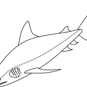 blue shark coloring pages - photo#15