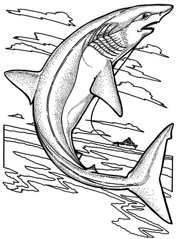 Sharks, : A Sandtiger Shark Getting Caught by the Fisherman Coloring Page