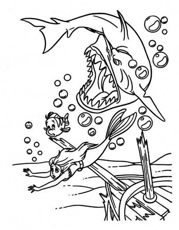 Sharks, : A Shark Chasing Ariel Little Mermaid Coloring Page