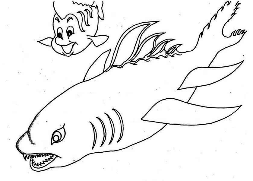 Sharks, : A Wierd Shaped Shark and Little Fish Coloring Page