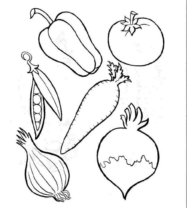 Fruits and Vegetables, : Different Types of Vegetables Coloring Page