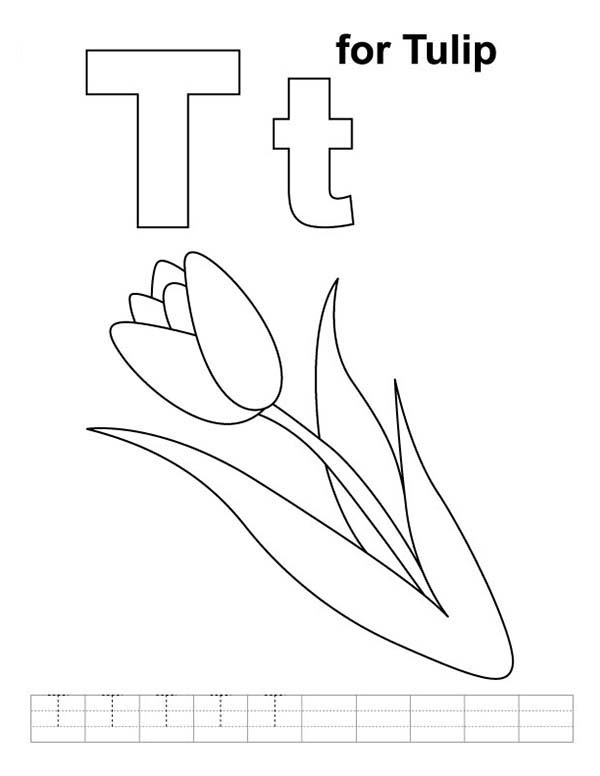 Tulips, : Learn Letter T for Tulip Coloring Page
