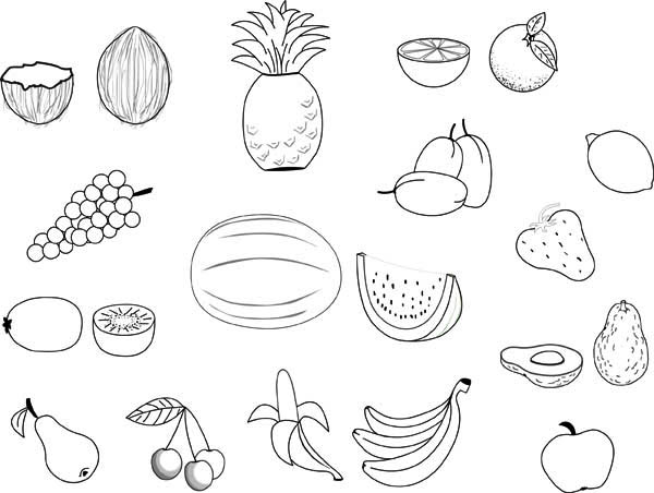 Fruits and Vegetables, : Many Differet Types of Fruit from All Season Coloring Page