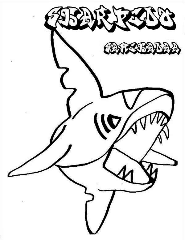 Sharks, : Pokemon Shark Character Sharpedo Coloring Page