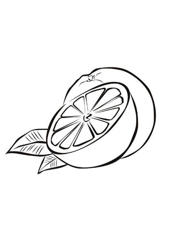 Fruits and Vegetables, : Slice of Fresh Orange Fruits Coloring Page