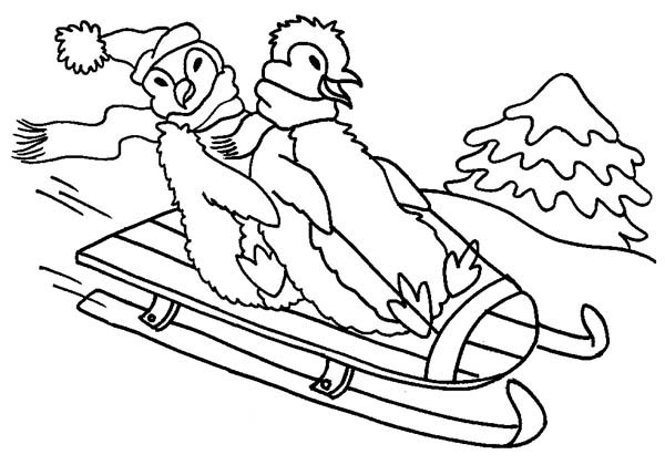 Penguins, : Two Happy Penguins Playing Winter Sled on the Hill Coloring Page