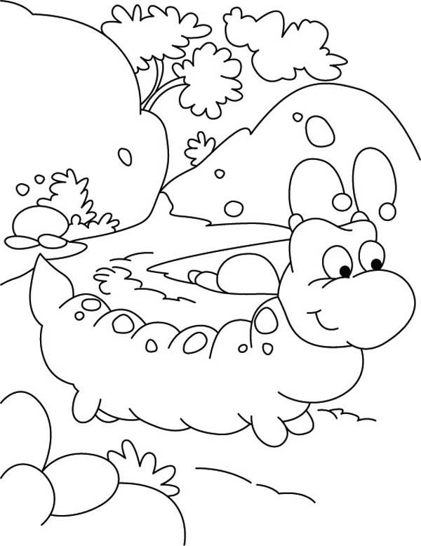 Caterpillars, : Where Do You Want to Go Caterpillar Coloring Page