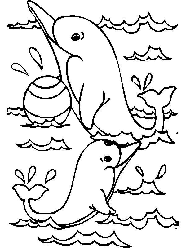 Dolphin, : dolphin-catches-the-ball-coloring-page.jpg