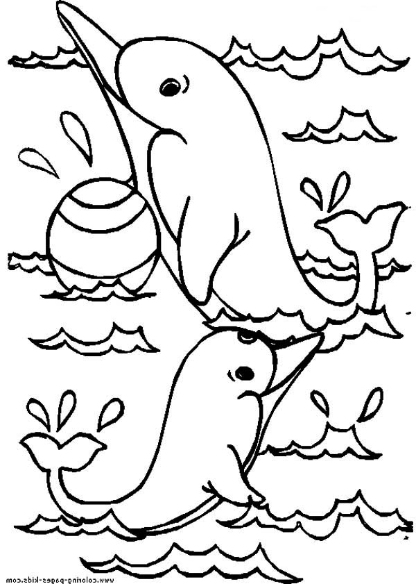 Dolphin, : dolphin-holding-a-ball-coloring-page.jpg