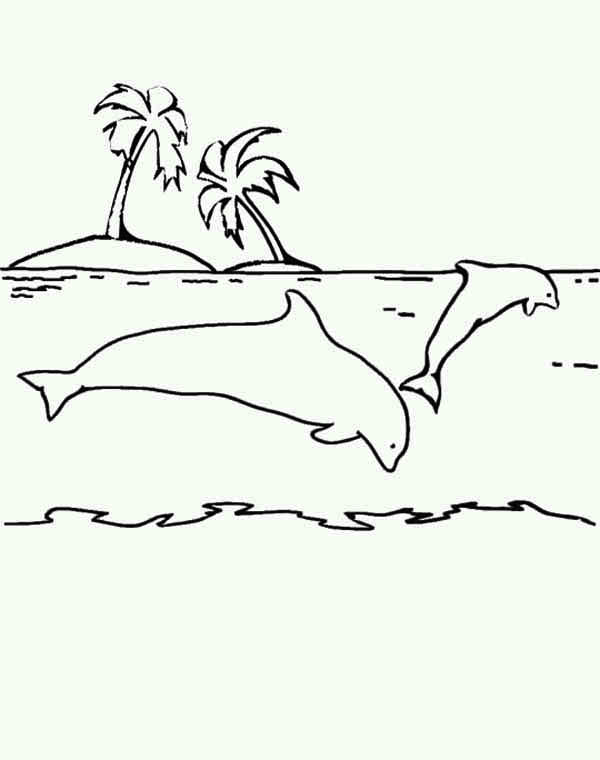 Dolphin, : dolphins-around-small-island-coloring-page.jpg