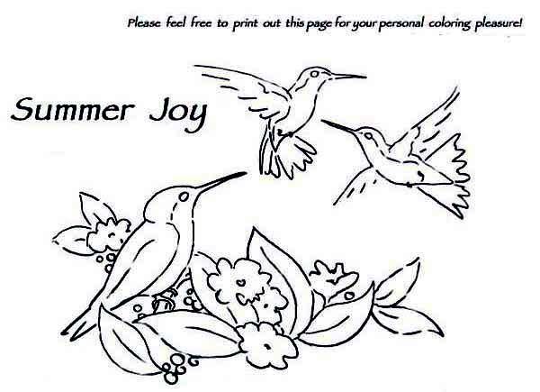 Hummingbirds, : hummingbird-activity-on-summer-coloring-page.jpg