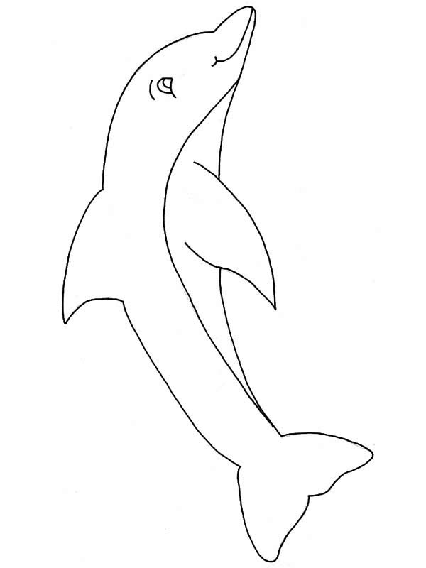 Dolphin, : its-a-pink-dolphin-coloring-page.jpg