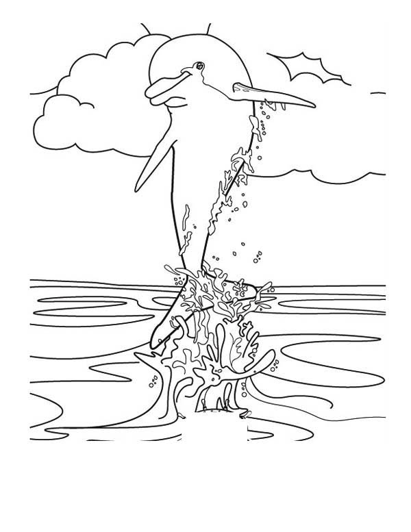 Dolphin, : jump-and-splash-over-the-body-dolphin-coloring-page.jpg