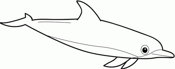 Dolphin, : printable-dolphin-coloring-pages.jpg