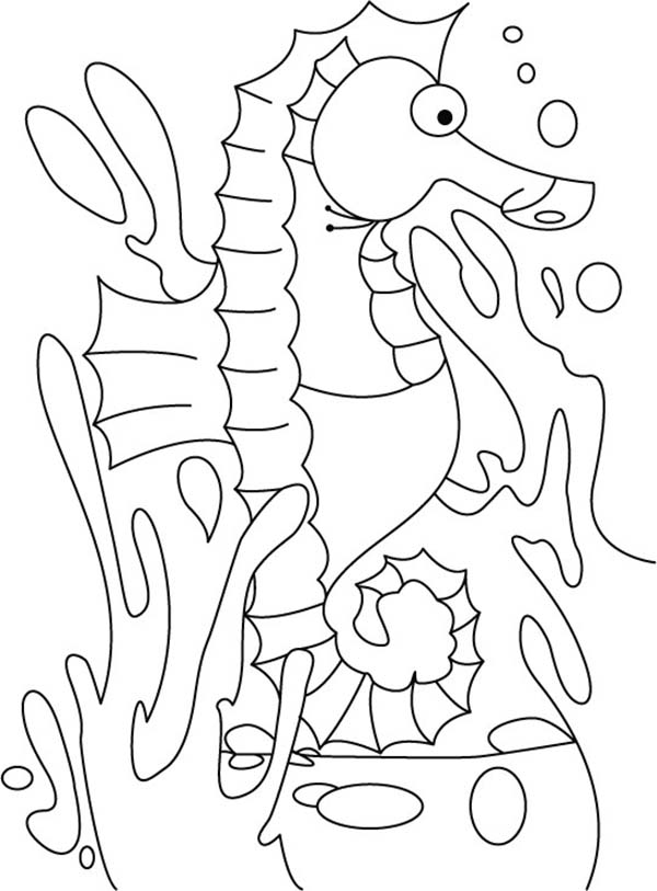 Seahorse, : A Cartoon Drawing of Seahorse in Its Habitat Coloring Page