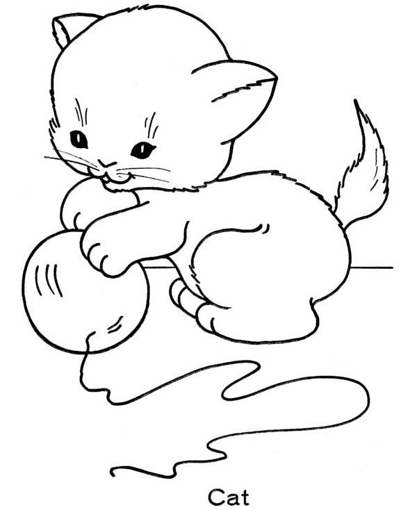 Kitty Cat, : A Cute Kitty Cat Playing with a Ball of String Coloring Page