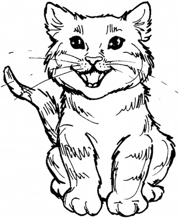Kitty Cat, : A Cute Kitty Cat Roaring for Meal Coloring Page