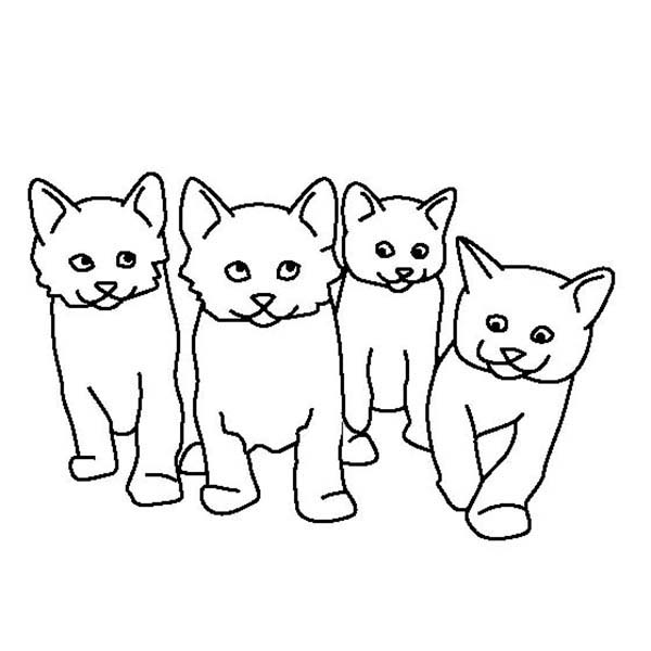 Kitty Cat, : A Kids Drawing of Four Cute Kitty Cats Coloring Page