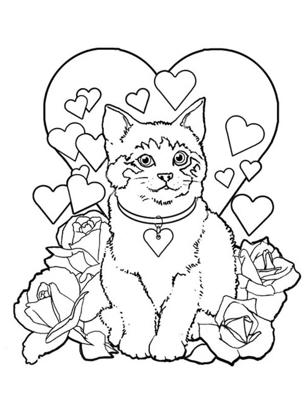 Kitty Cat, : A Sweet Kitty Cat on Valentines Day Coloring Page