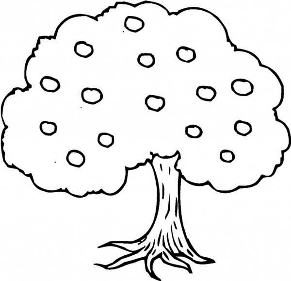 Apple Tree, : An Apple Tree Coloring Page