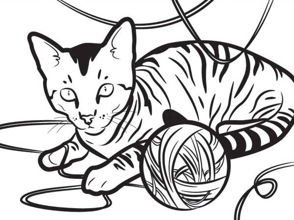 Kitty Cat, : An Egyptian Kitty Cat Playing with a Yarn Coloring Page