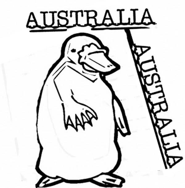 Australia Day, : An Illustration of Platypus for Australia Day Decoration Coloring Page