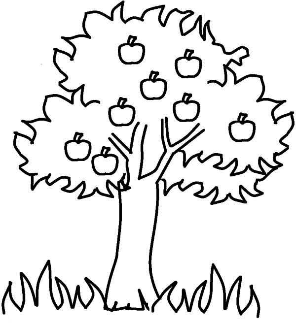 Apple Tree, : Apple Tree in the Jungle Coloring Page