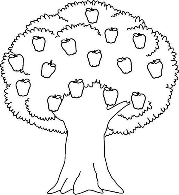 Apple Tree, : Awesome Apple Tree Coloring Page