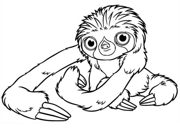 The Croods, : Belt, a Three-Toed Sloth from the Croods Coloring Page