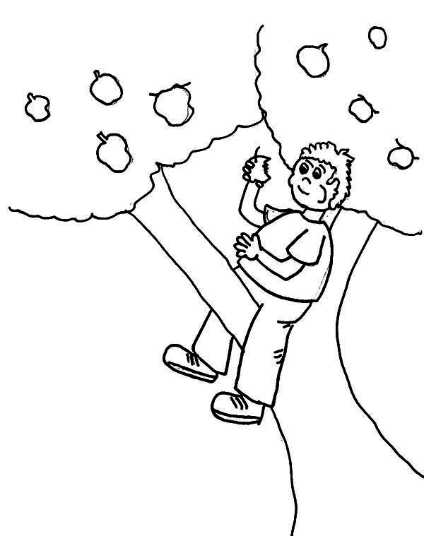 Apple Tree, : Boy Eating Apple Up an Apple Tree Coloring Page