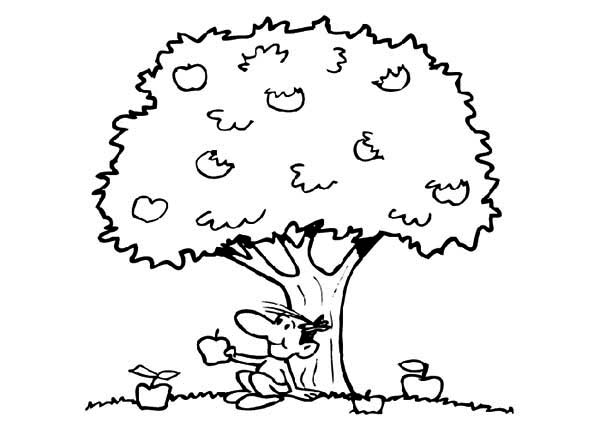 Apple Tree, : Boy Sitting Under an Apple Tree Coloring Page