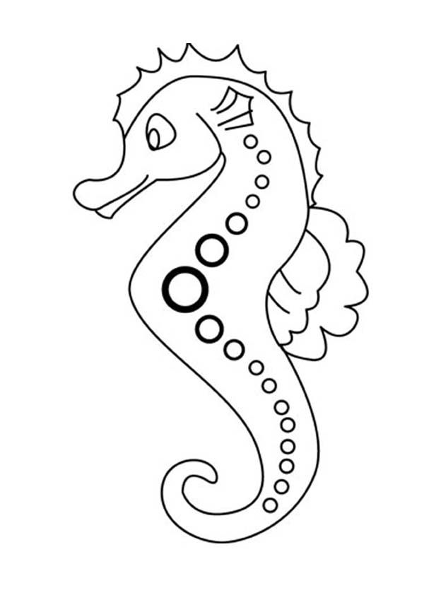 Seahorse, : Lovely Seahorse in Cartoon Coloring Page