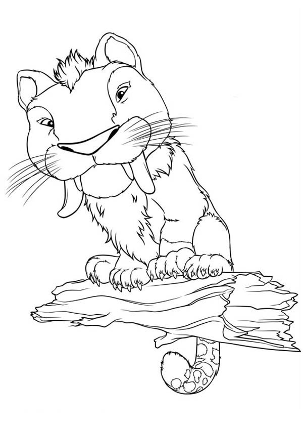 The Croods, : Meet Macawnivore from the Croods Coloring Page
