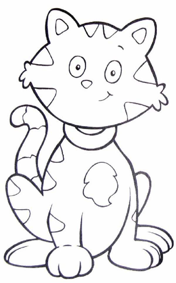 Kitty Cat, : This is Tabby the Kitty Cat Coloring Page