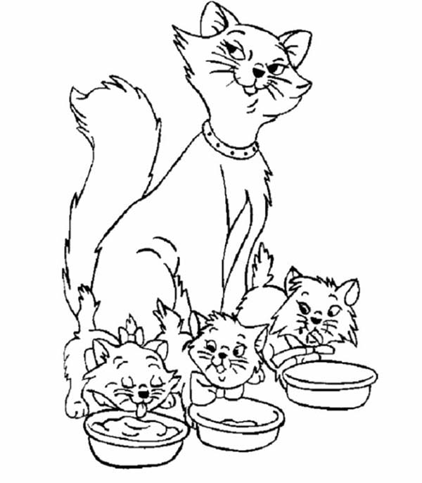 Kitty Cat, : Three Kitty Cats and Its Mom Coloring Page