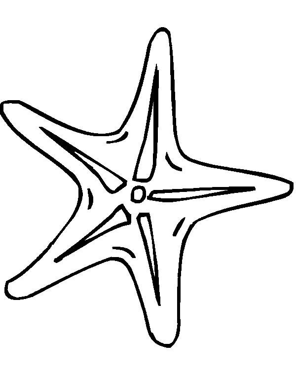 Starfish, : Tiny Starfish Coloring Page