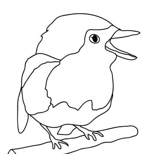 coloring pages robin tree - photo#11